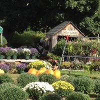 Lori Pelikan Strobel's barn