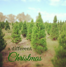 DifferentChristmas1